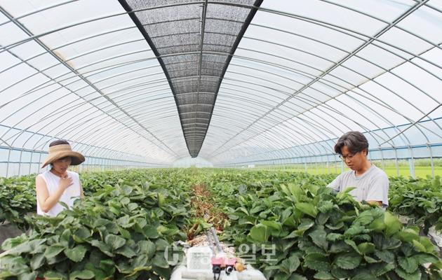 농사, 전문성 있는 일로 인정받는 일